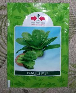 Benih Packchoy Nauli 10 gram
