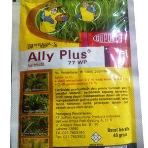 ALLY PLUS 77 WP herbisida pembasmi rumput sawah