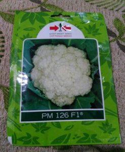 Benih Bunga Kol PM 126 isi 250