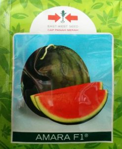 Bibit Benih Semangka Amara 20 gram