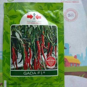 Bibit Benih Cabe Merah Gada 1500 biji