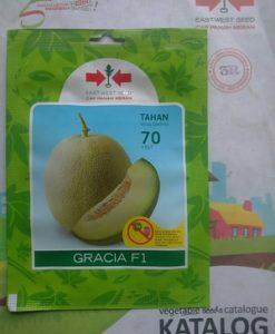 Bibit Benih Melon GRACIA isi 40 biji
