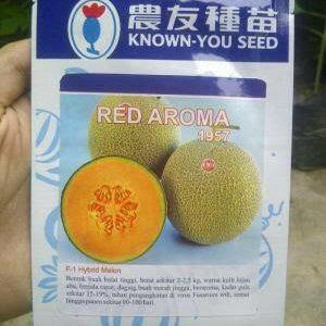 jual melon red aroma